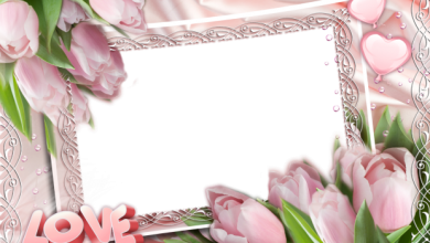 pink roses romantic photo frame 390x220 - pink roses romantic photo frame