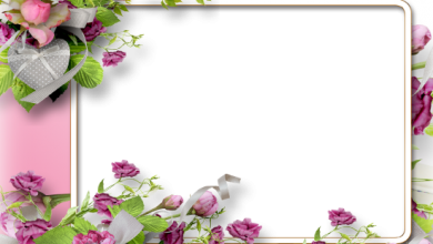 purple beautiful flowers love photo frame 390x220 - purple beautiful flowers love photo frame