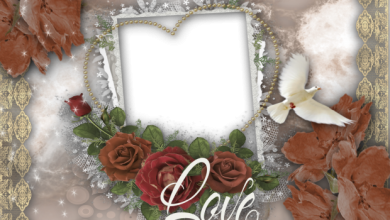romantic bird romantic photo frame 390x220 - romantic bird romantic photo frame