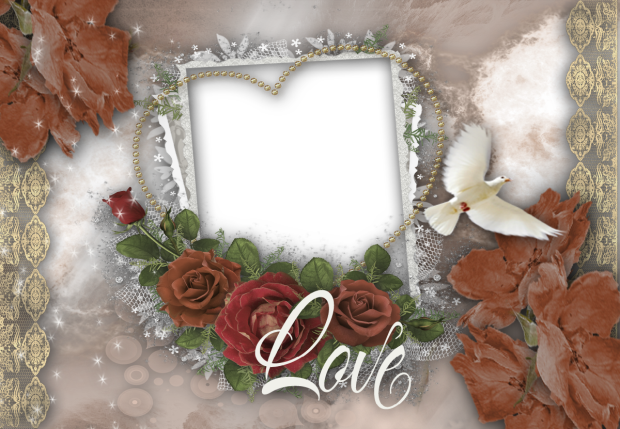 romantic bird romantic photo frame - romantic bird romantic photo frame