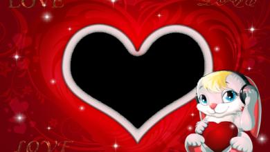 romantic bunny love photo frame 390x220 - romantic bunny love photo frame