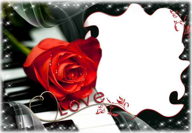 romantic piano with red flower romantic photo frame - romantic piano with red flower romantic photo frame