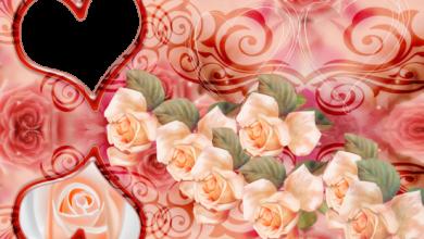 romantic roses love photo frame 390x220 - romantic roses love photo frame