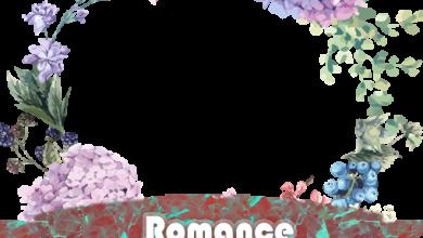 Romance facebook foto de perfil 390x220 - Romance facebook foto de perfil