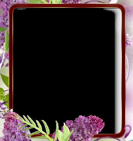 Un marco de flores silvestres Marcos para Fotos 443x470 - Un marco de flores silvestres Marcos para Fotos