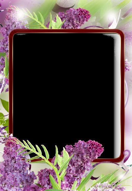 Un marco de flores silvestres Marcos para Fotos - Un marco de flores silvestres Marcos para Fotos