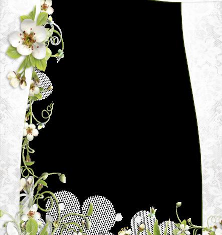 Un marco de pequeñas rosas blancas Marcos para Fotos 443x470 - Un marco de pequeñas rosas blancas Marcos para Fotos