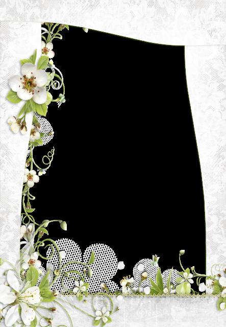 Un marco de pequeñas rosas blancas Marcos para Fotos - Un marco de pequeñas rosas blancas Marcos para Fotos