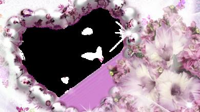 Marco de fotos de corazon morado en flor 390x220 - Marco de fotos de corazón morado en flor