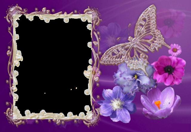 Marco de fotos morado con hermosa mariposa - Marco de fotos morado con hermosa mariposa