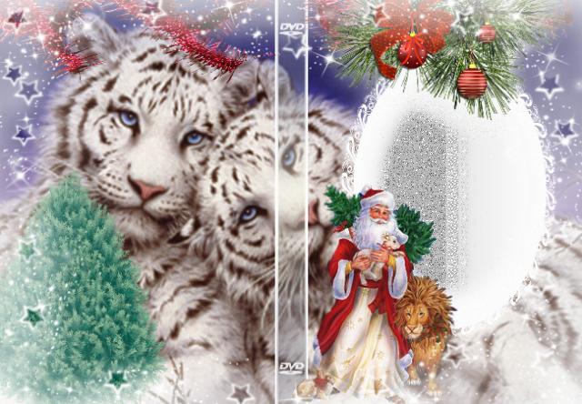 marco de fotos de escritorio de tigres blancos - marco de fotos de escritorio de tigres blancos