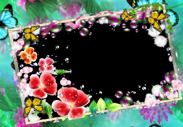 marco de fotos de mariposa romantica marco de amor - marco de fotos de mariposa romántica marco de amor