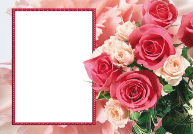 marco de fotos rosa con ramo de flores de colores - marco de fotos rosa con ramo de flores de colores