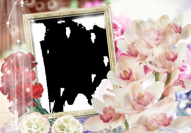 pequeno marco de fotos de flores abiertas - pequeño marco de fotos de flores abiertas