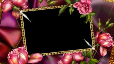 Photo of El marco dorado y el romántico marco de fotos de rosas rojas.