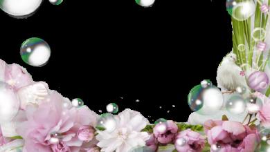 Photo of las bolas de agua románticas mágicas marco de fotos romántico