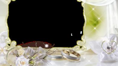 mi marco de fotos de boda con flores blancas 390x220 - mi marco de fotos de boda con flores blancas