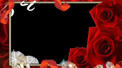 mi marco de fotos de boda con flores rojas 390x220 - mi marco de fotos de boda con flores rojas