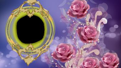 mi marco dorado romantico con rosa calida 390x220 - mi marco dorado romántico con rosa cálida