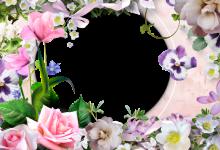 Photo of mis románticas flores dulces con mi marco de fotos