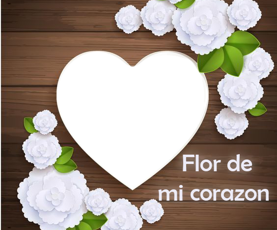 Flor de mi corazon marco de fotos romantico 564x470 - Flor de mi corazon marco de fotos romantico
