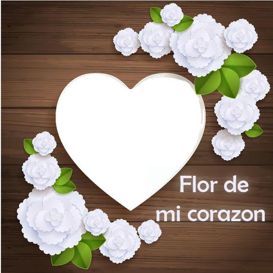 Flor de mi corazon marco de fotos romantico - Flor de mi corazon marco de fotos romantico