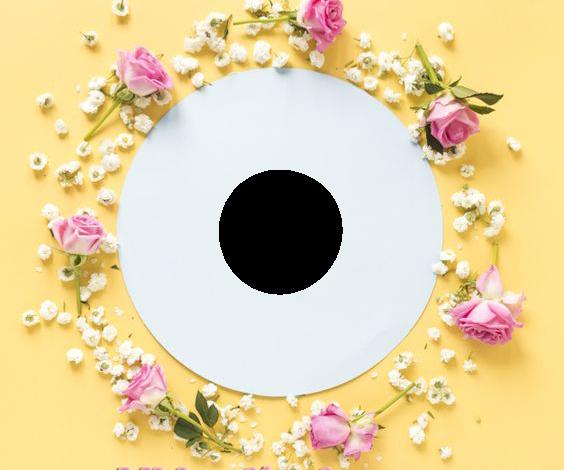 Mi jardin de amor marco de fotos romantico 564x470 - Mi jardín de amor marco de fotos romantico