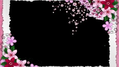 Primavera de seres queridos marco de fotos romantico 390x220 - Primavera de seres queridos marco de fotos romantico