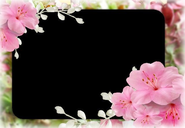 Primavera del corazon marco de fotos romantico - Primavera del corazón marco de fotos romantico