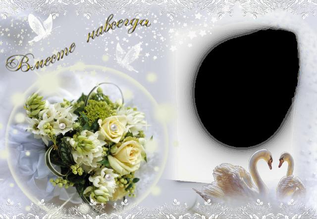 el marco de fotos de pajaros blancos para la foto de la boda - el marco de fotos de pájaros blancos para la foto de la boda