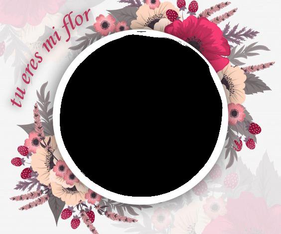 tu eres mi flor marco de fotos romantico 564x470 - tu eres mi flor marco de fotos romantico