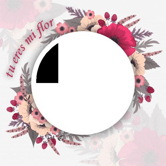 tu eres mi flor marco de fotos romantico - tu eres mi flor marco de fotos romantico