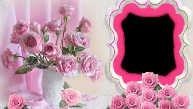 Marco de fotos muy bonita y romantica 390x220 - Marco de fotos muy bonita y romántica