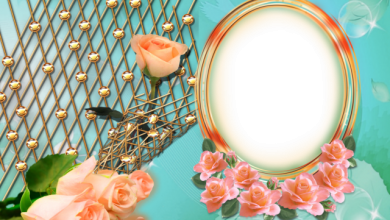 Photo of círculo muy hermoso y romántico con marco de fotos de flores