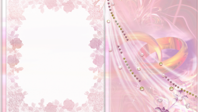 marco de boda rosa con marco de fotos de 2 anillos 390x220 - marco de boda rosa con marco de fotos de 2 anillos