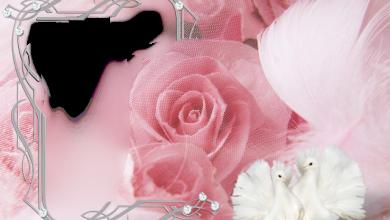 Photo of marco de fotos rosa muy romántico con dos pájaros blancos