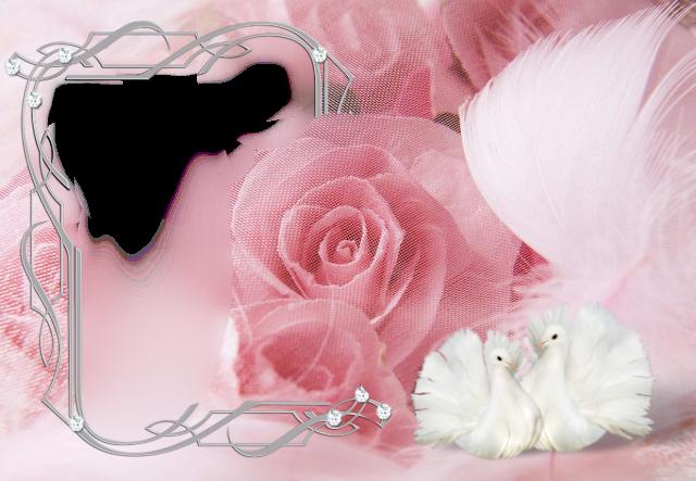 marco de fotos rosa muy romantico con dos pajaros blancos - marco de fotos rosa muy romántico con dos pájaros blancos