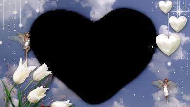 El Amor Es Un Corazon Blanco Marcos Para Foto 390x220 - El Amor Es Un Corazon Blanco Marcos Para Foto
